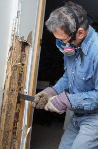 Termite Inspection Long Island Ny Techcon Inspection